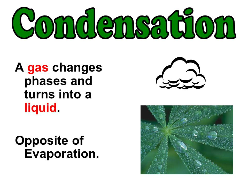 Condensation A gas changes phases and turns into a liquid.