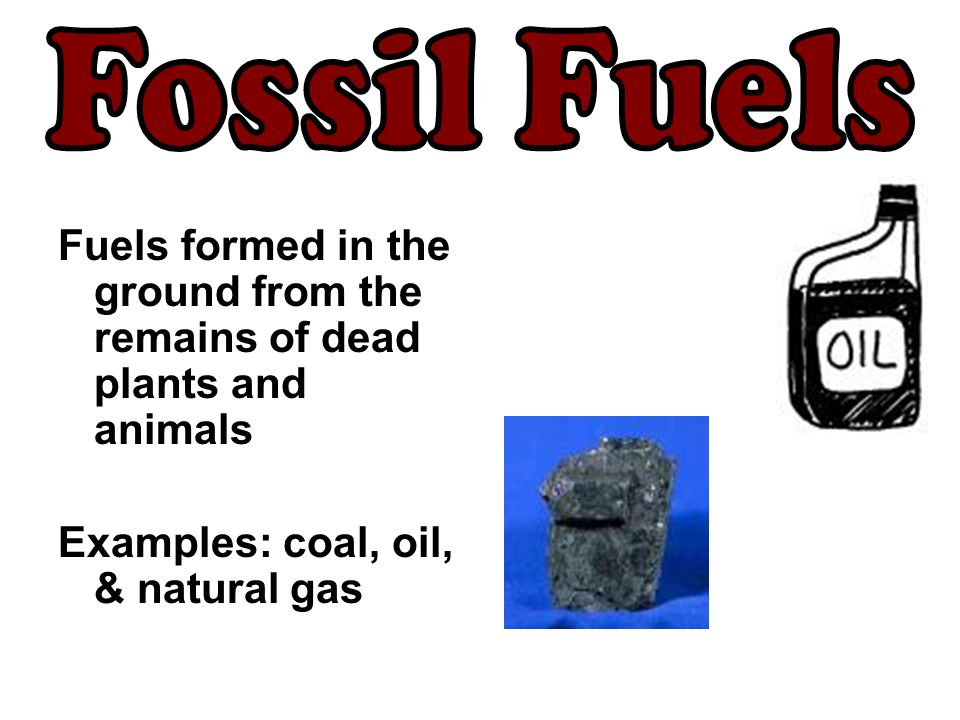 Fossil Fuels Fuels formed in the ground from the remains of dead plants and animals.