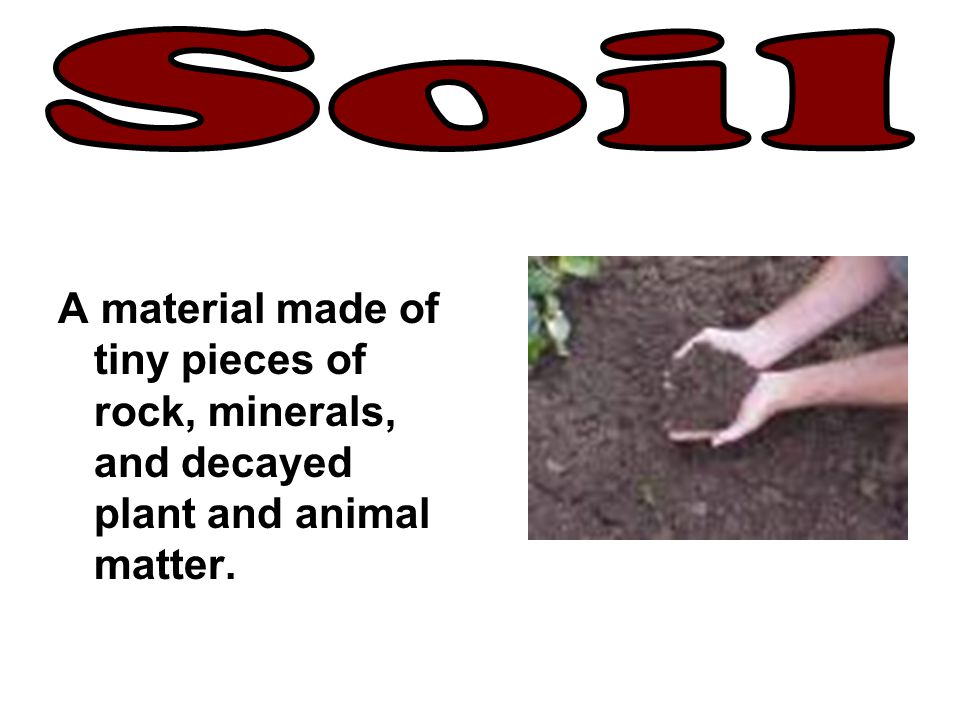 Soil A material made of tiny pieces of rock, minerals, and decayed plant and animal matter.