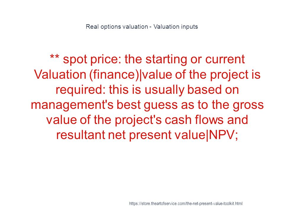 Real options valuation - Valuation inputs