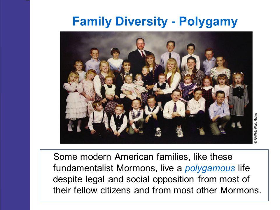 Family Diversity - Polygamy