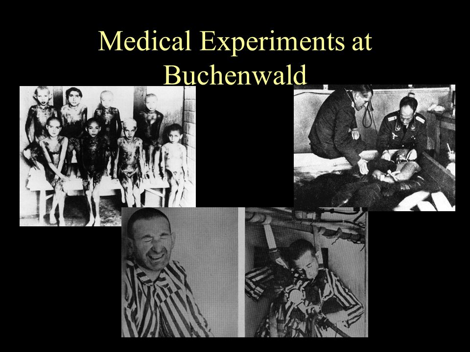 medical experiments of the holocaust