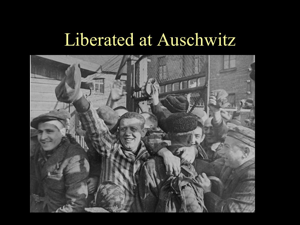 Liberated at Auschwitz