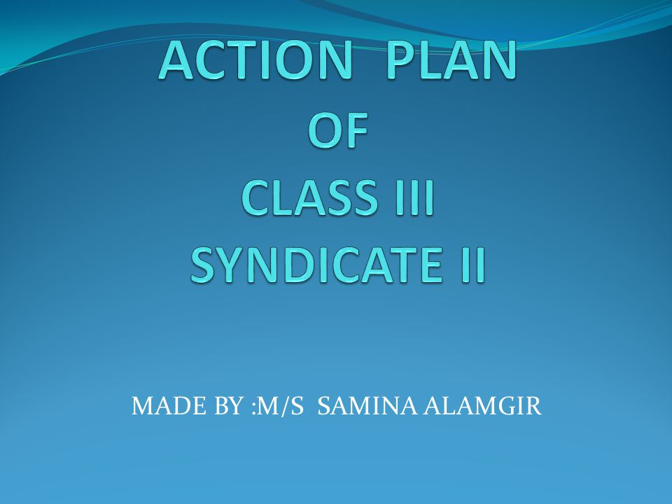 ACTION PLAN OF CLASS III SYNDICATE II