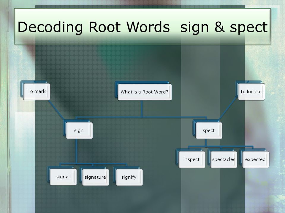 Decoding Root Words sign & spect