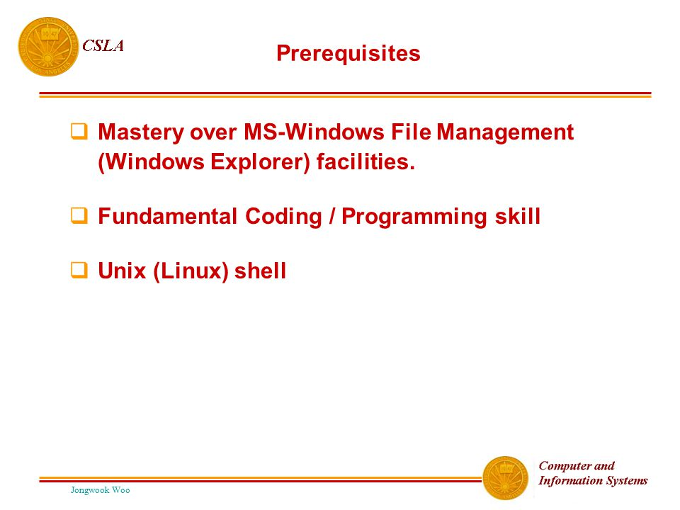 Mastery over MS-Windows File Management (Windows Explorer) facilities.