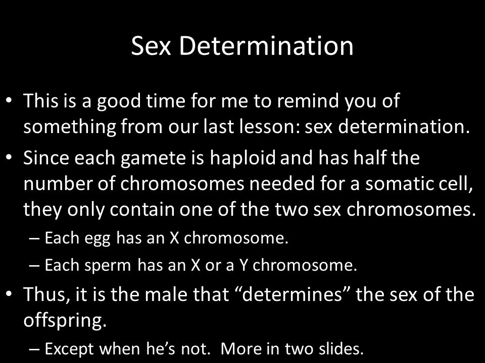 Sex Determination This is a good time for me to remind you of something from our last lesson: sex determination.