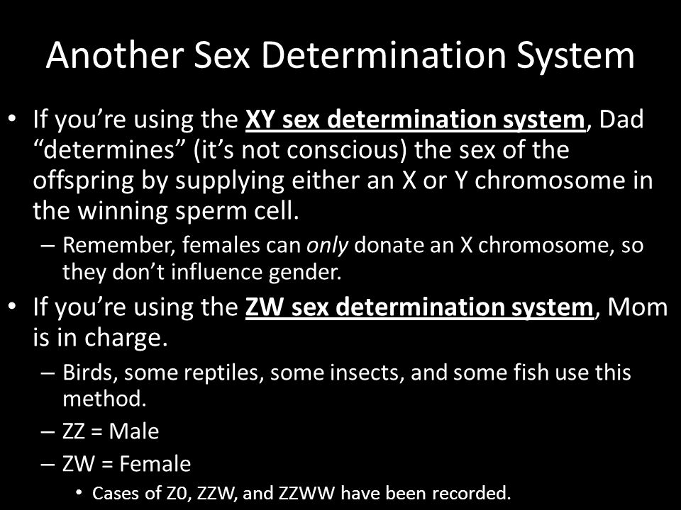 Another Sex Determination System