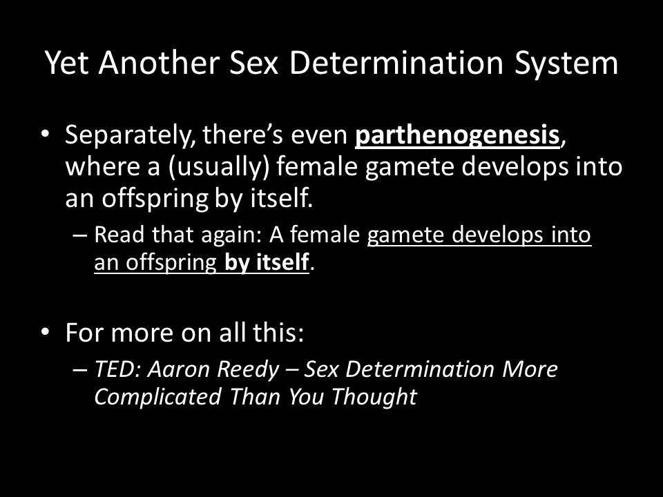 Yet Another Sex Determination System