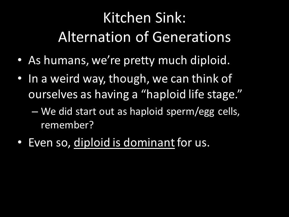 Kitchen Sink: Alternation of Generations