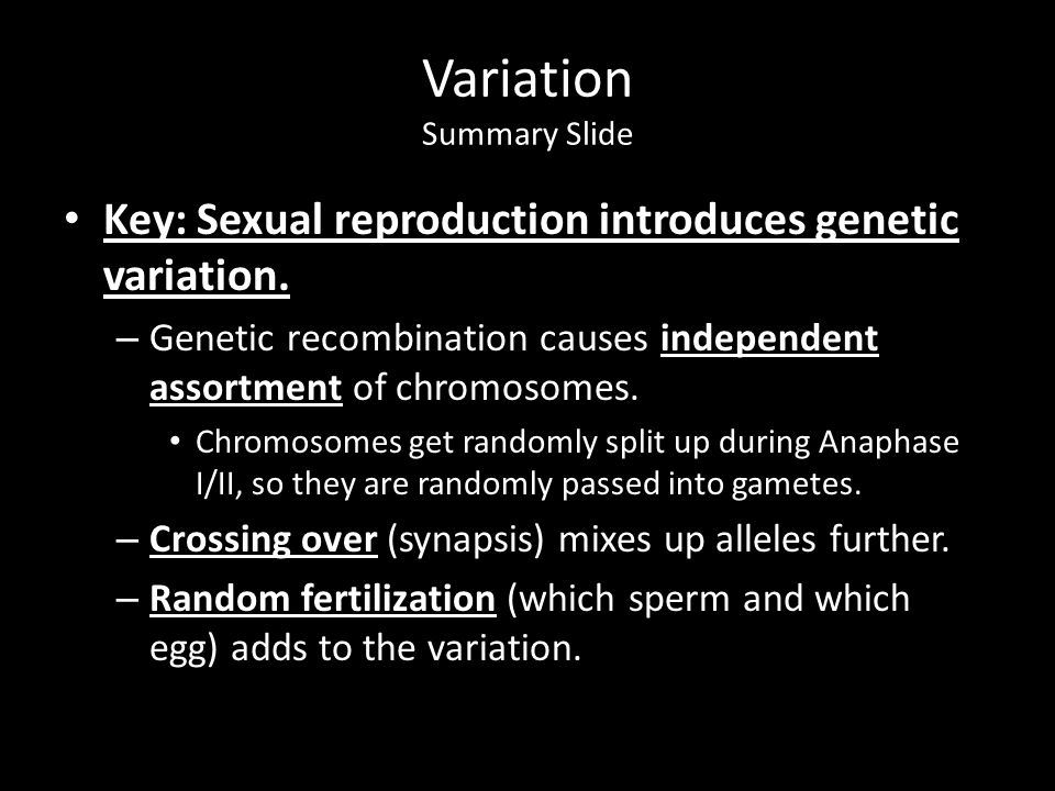 Variation Summary Slide