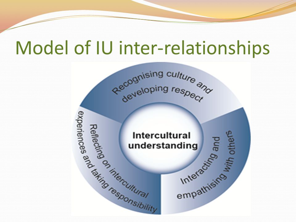 Model of IU inter-relationships