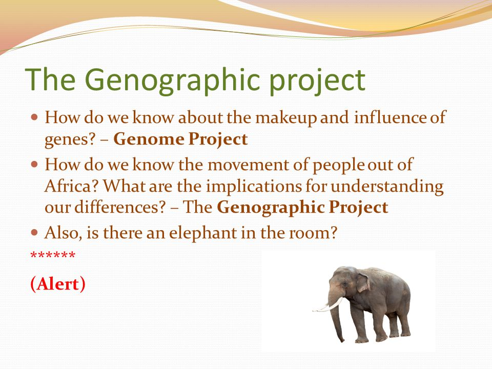 The Genographic project