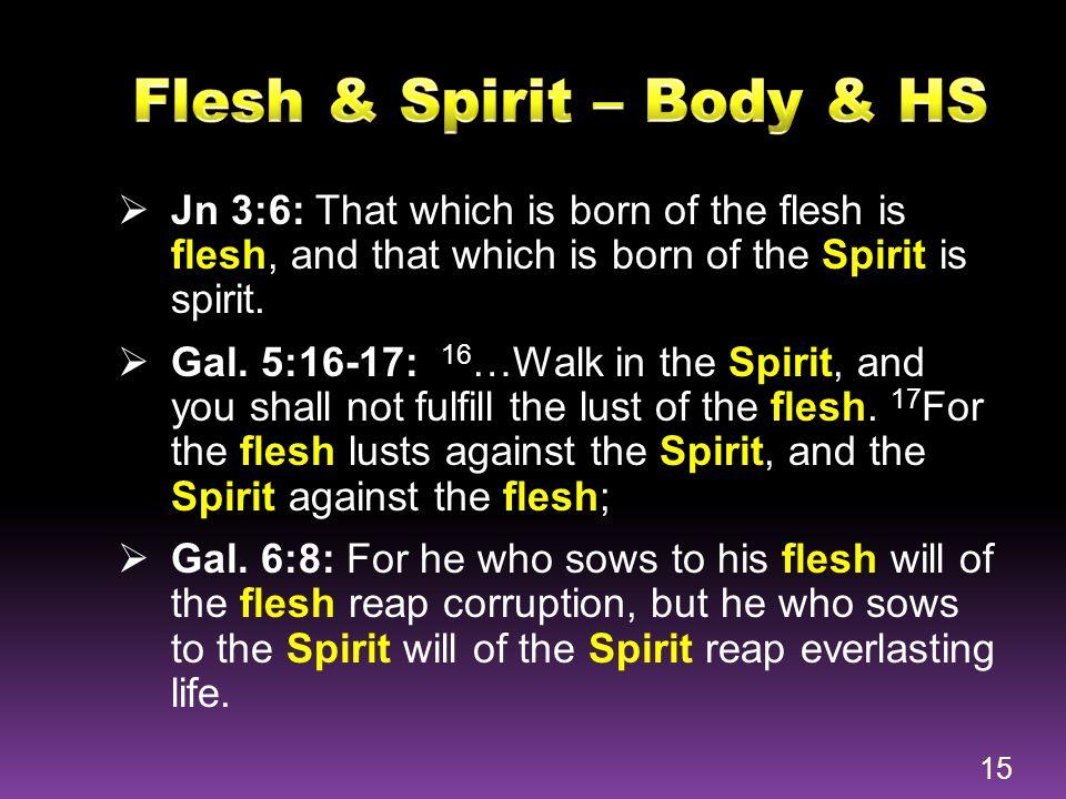 Flesh & Spirit – Body & HS
