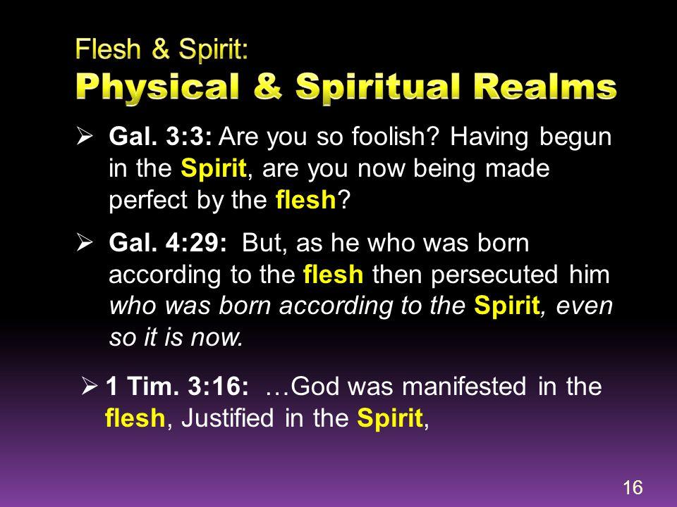 Flesh & Spirit: Physical & Spiritual Realms