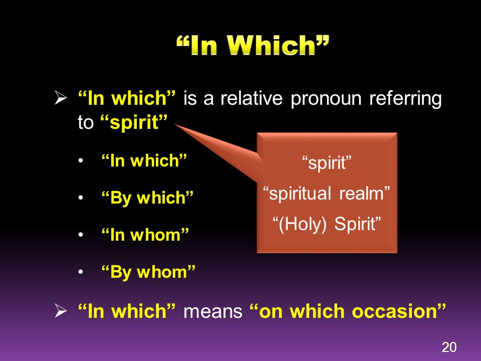 In Which In which is a relative pronoun referring to spirit