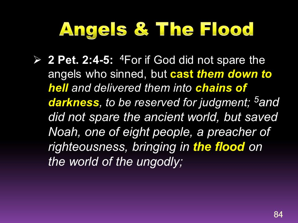 Angels & The Flood