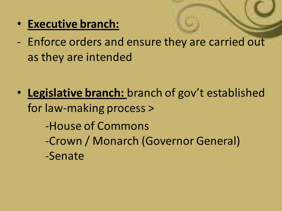 Executive branch: Enforce orders and ensure they are carried out as they are intended.