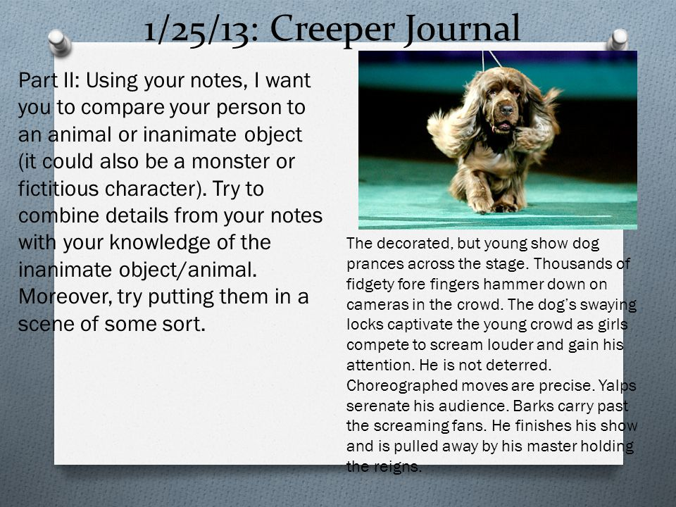 1/25/13: Creeper Journal