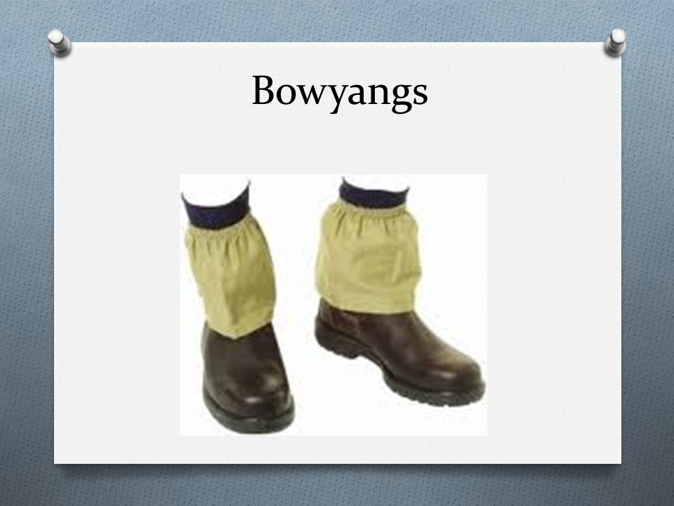 Bowyangs