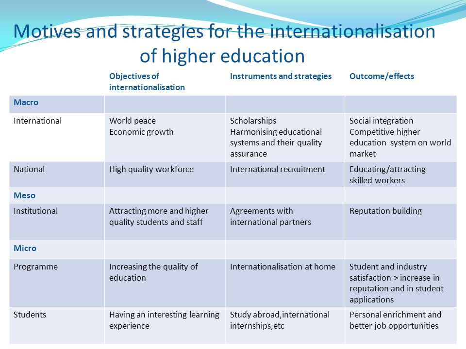 Motives and strategies for the internationalisation of higher education