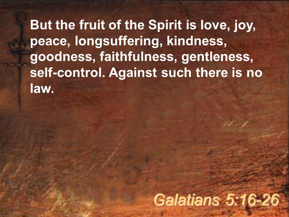But the fruit of the Spirit is love, joy, peace, longsuffering, kindness, goodness, faithfulness, gentleness, self-control. Against such there is no law.