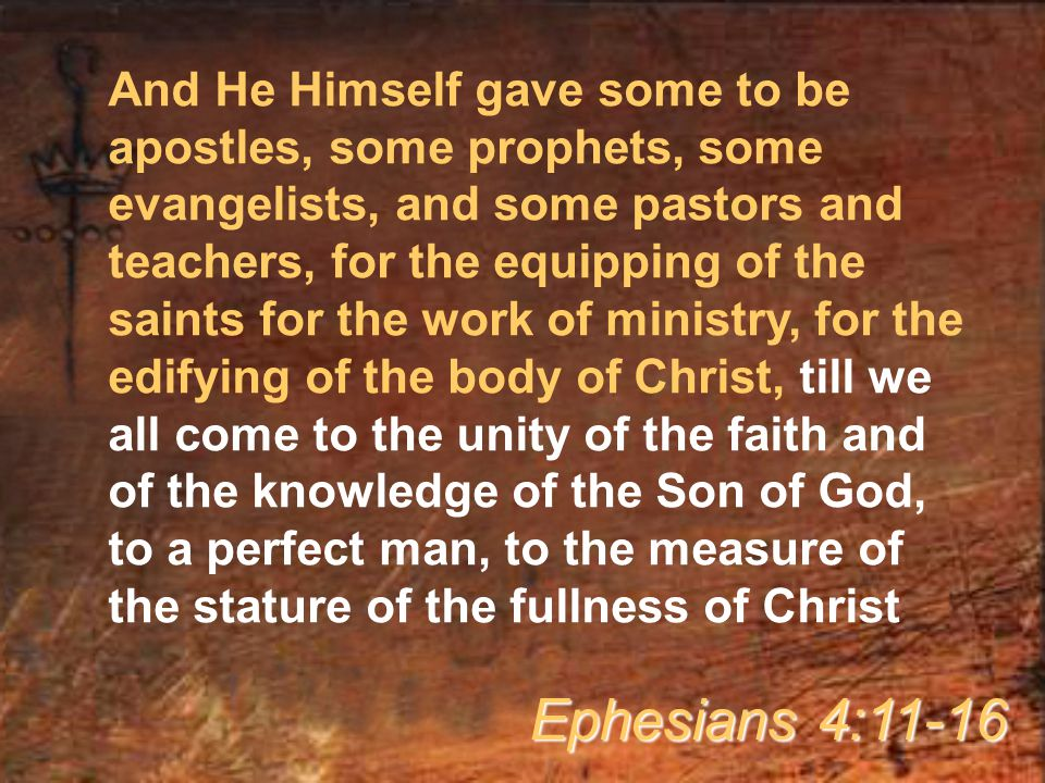 And He Himself gave some to be apostles, some prophets, some evangelists, and some pastors and teachers, for the equipping of the saints for the work of ministry, for the edifying of the body of Christ, till we all come to the unity of the faith and of the knowledge of the Son of God, to a perfect man, to the measure of the stature of the fullness of Christ