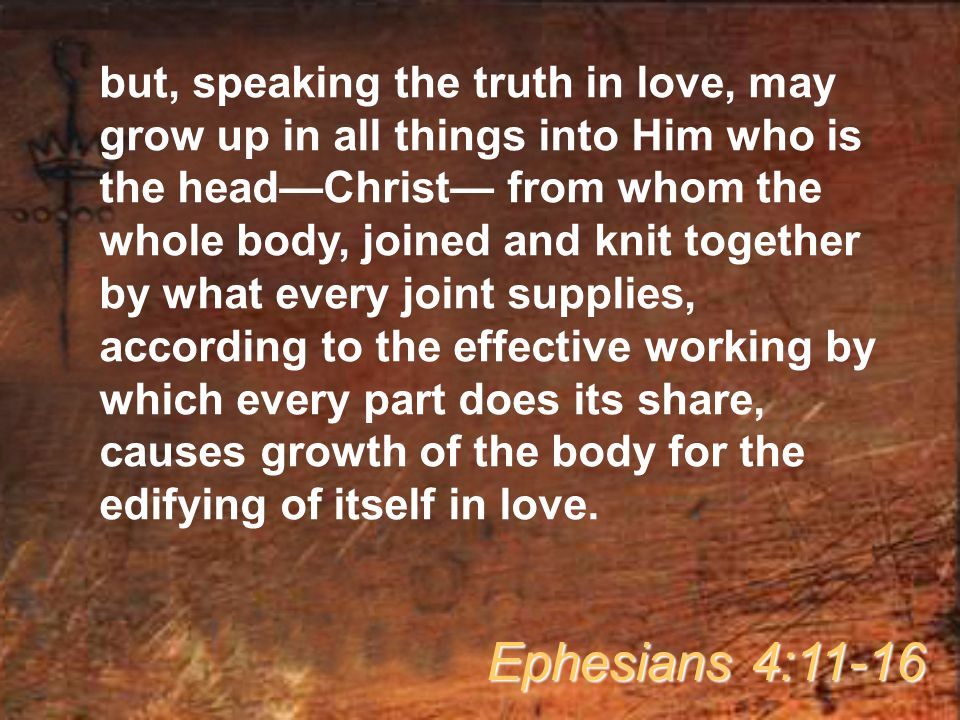 but, speaking the truth in love, may grow up in all things into Him who is the head—Christ— from whom the whole body, joined and knit together by what every joint supplies, according to the effective working by which every part does its share, causes growth of the body for the edifying of itself in love.