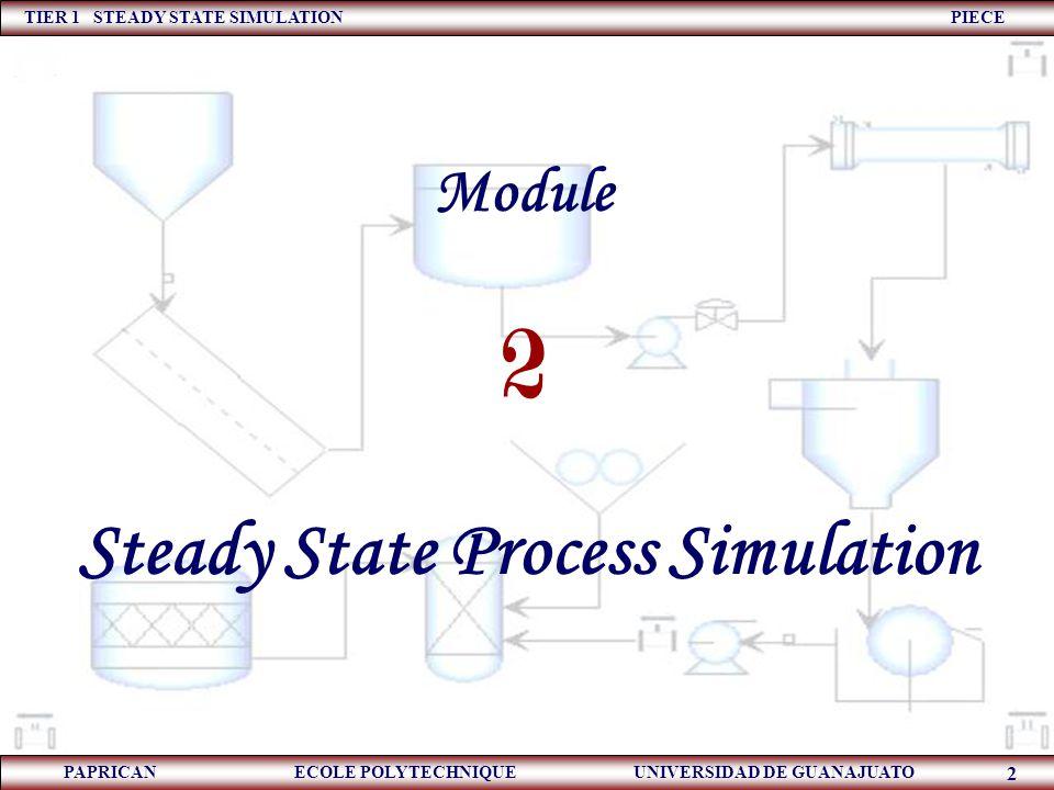 Steady State Process Simulation