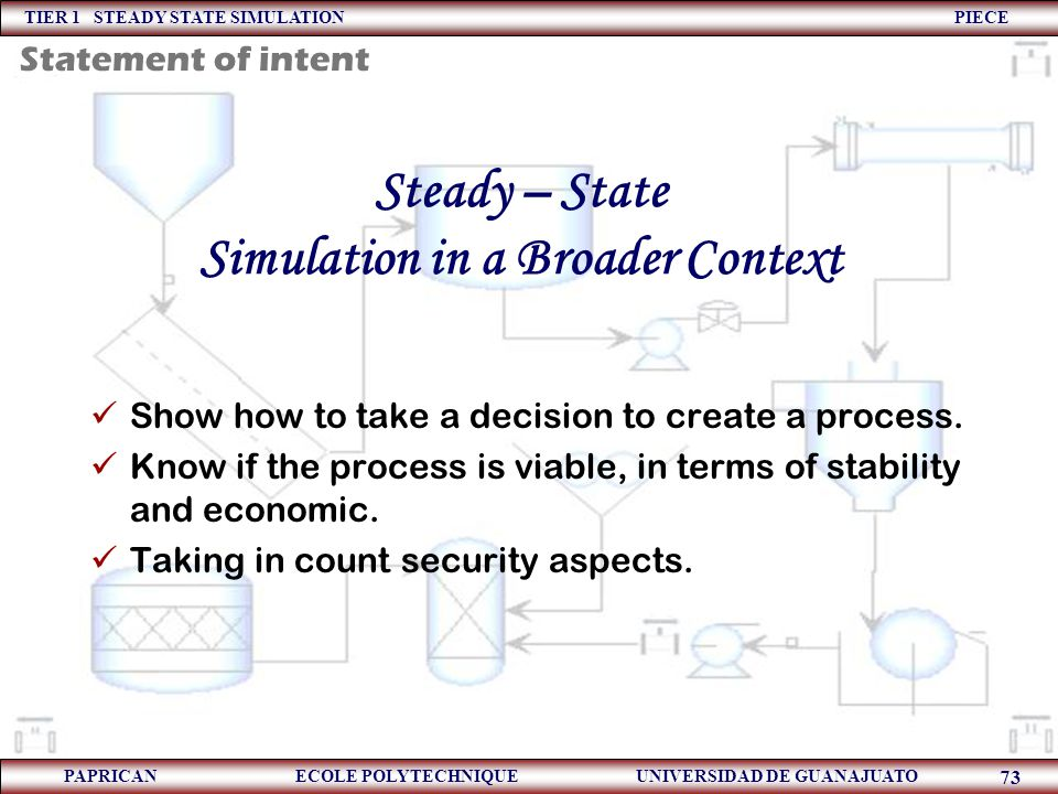 Steady – State Simulation in a Broader Context