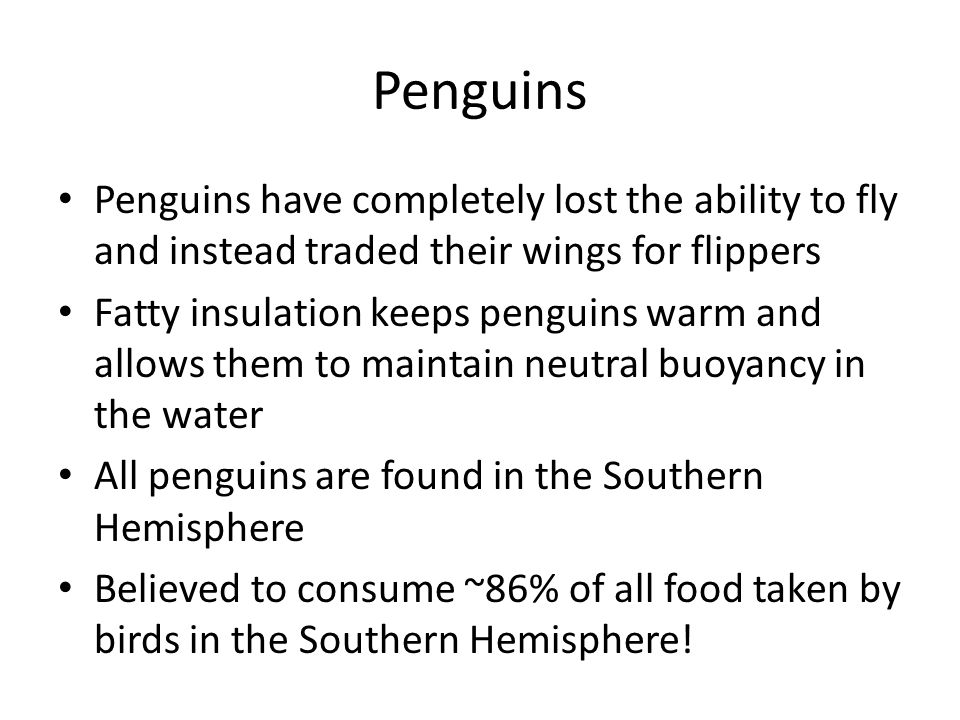 Penguins Penguins have completely lost the ability to fly and instead traded their wings for flippers.