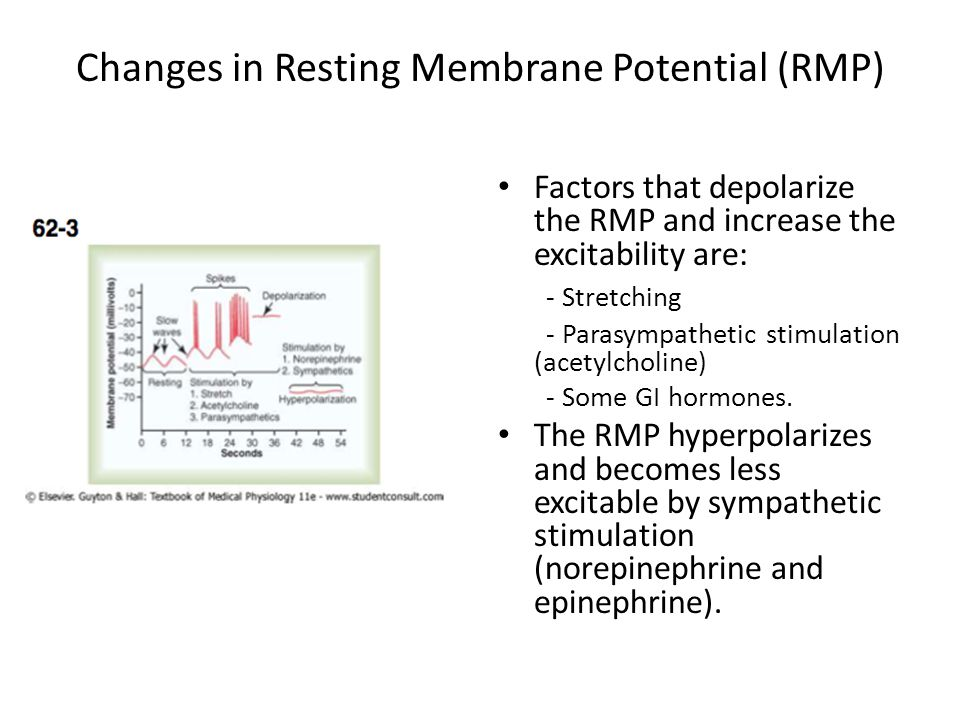 Changes in Resting Membrane Potential (RMP)