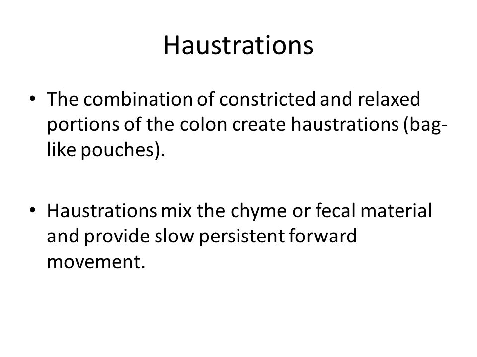 Haustrations The combination of constricted and relaxed portions of the colon create haustrations (bag-like pouches).