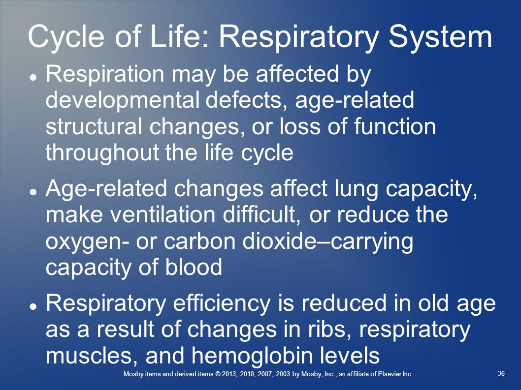 Cycle of Life: Respiratory System