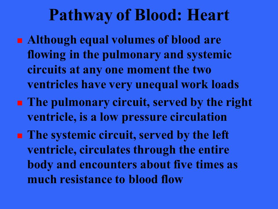 Pathway of Blood: Heart