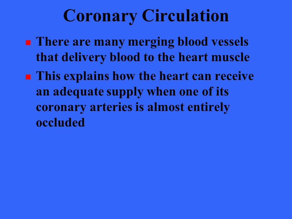 Coronary Circulation There are many merging blood vessels that delivery blood to the heart muscle.