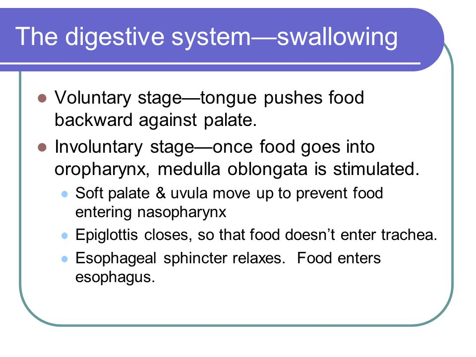 The digestive system—swallowing