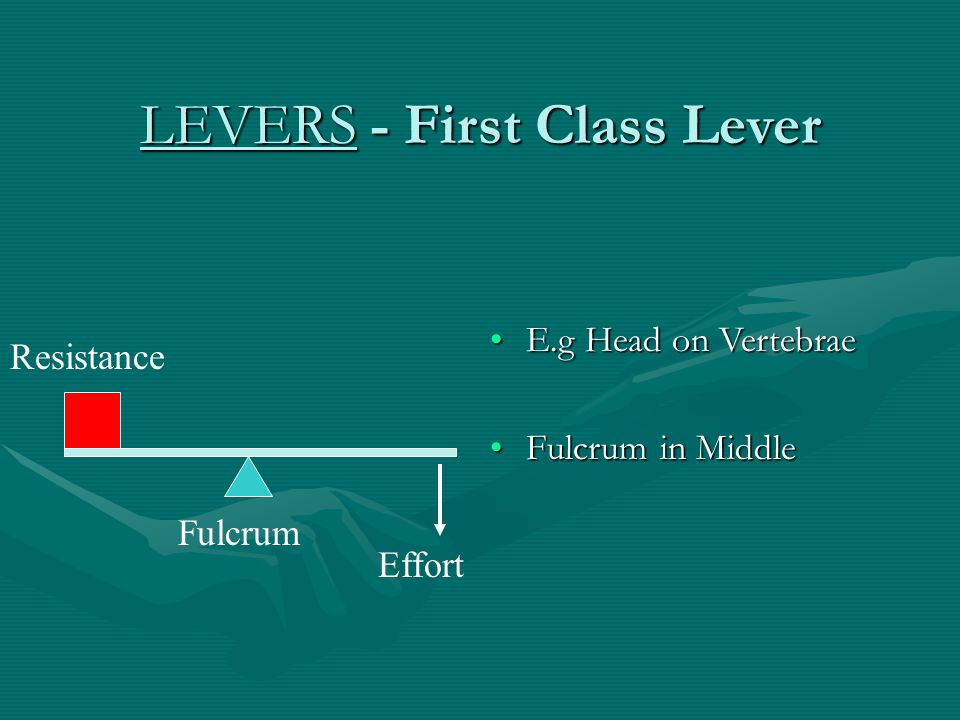 LEVERS - First Class Lever