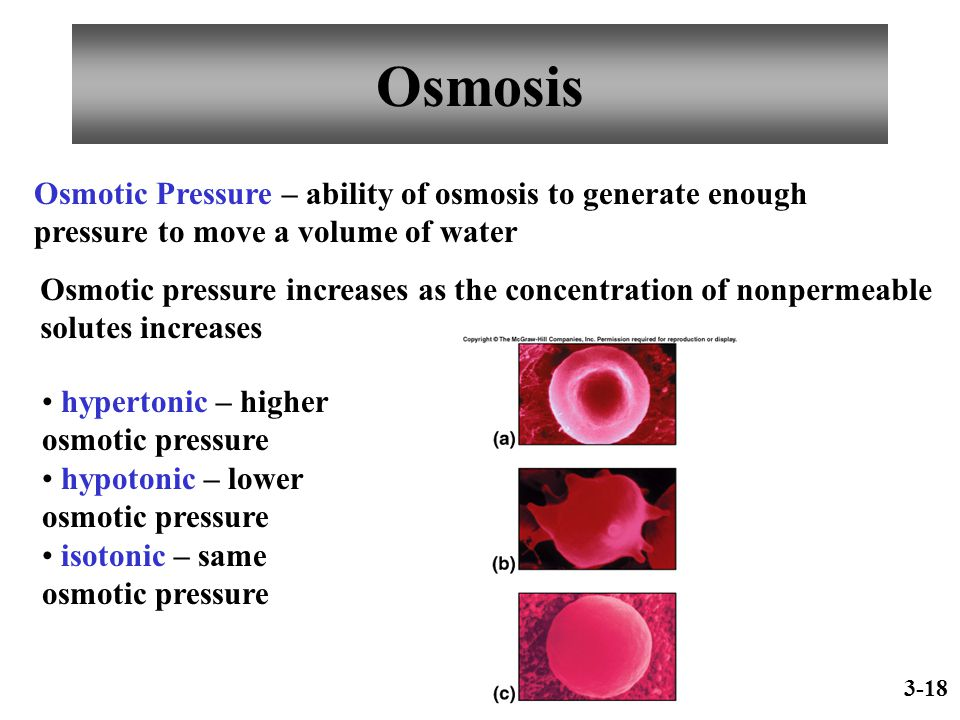 Osmosis Osmotic Pressure – ability of osmosis to generate enough pressure to move a volume of water.