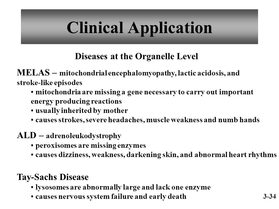 Clinical Application Diseases at the Organelle Level