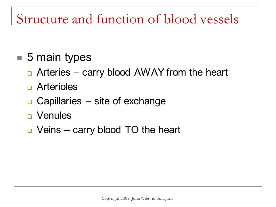 Structure and function of blood vessels