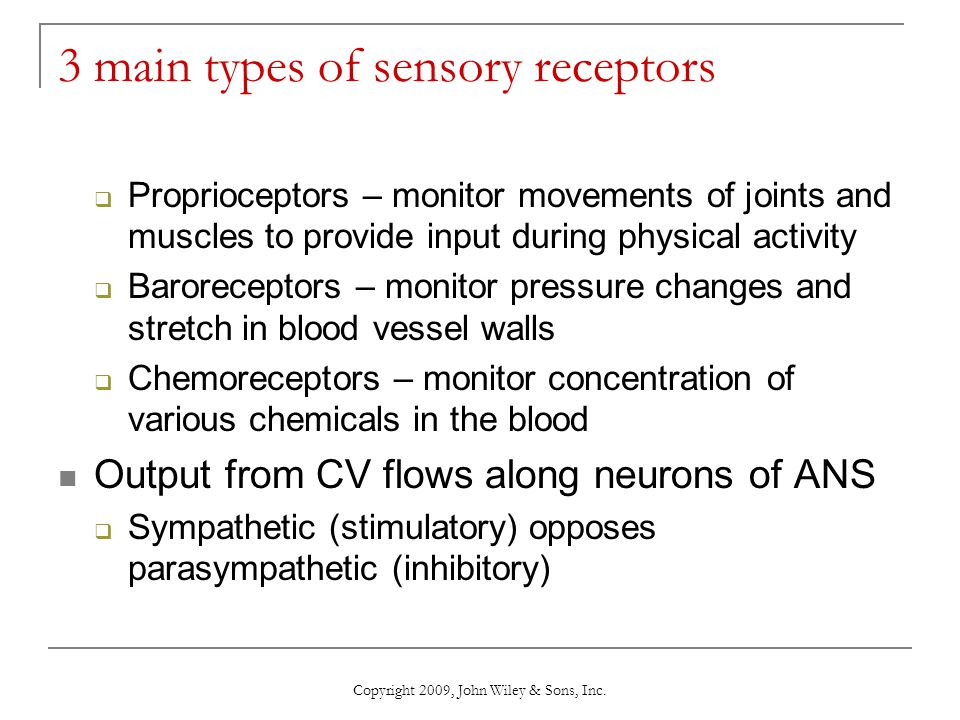 3 main types of sensory receptors