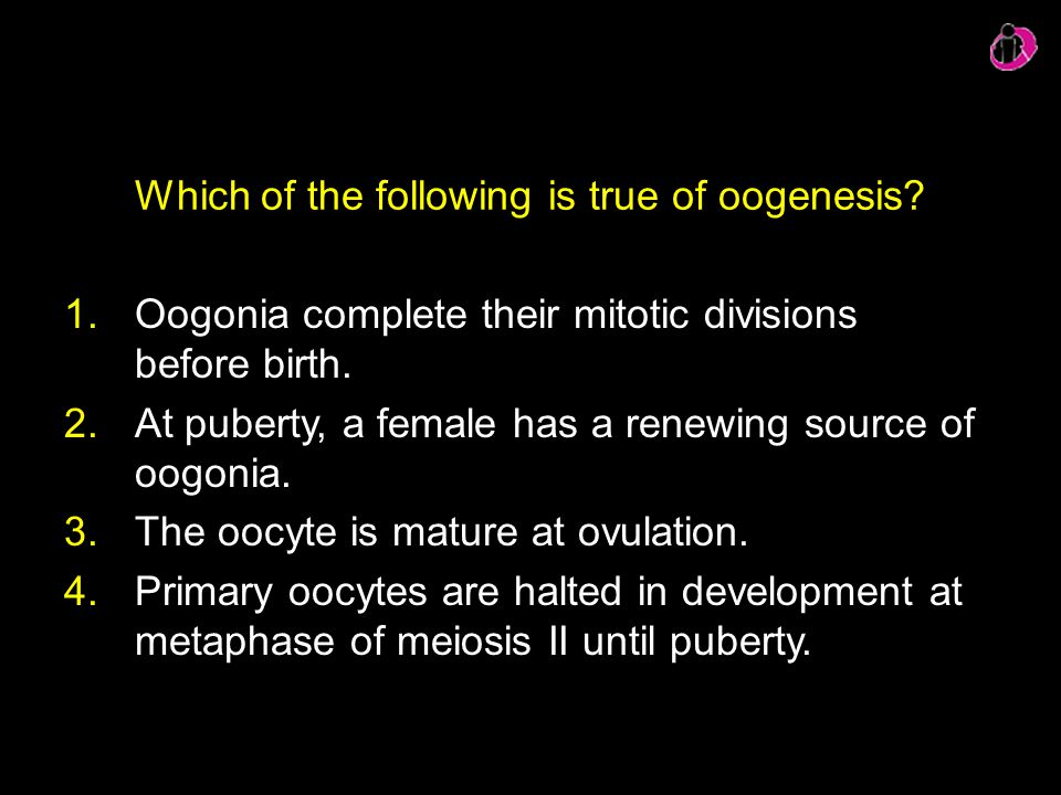 Which of the following is true of oogenesis