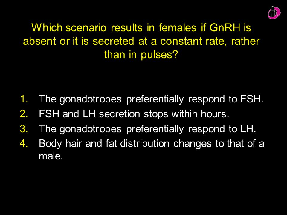Which scenario results in females if GnRH is absent or it is secreted at a constant rate, rather than in pulses
