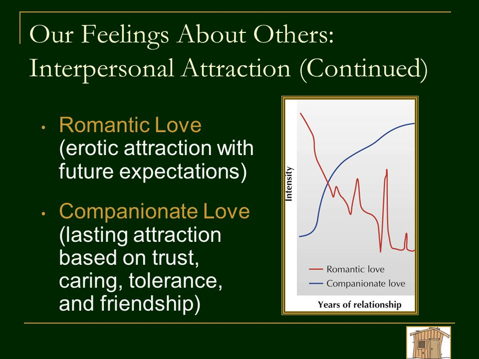 Our Feelings About Others: Interpersonal Attraction (Continued)