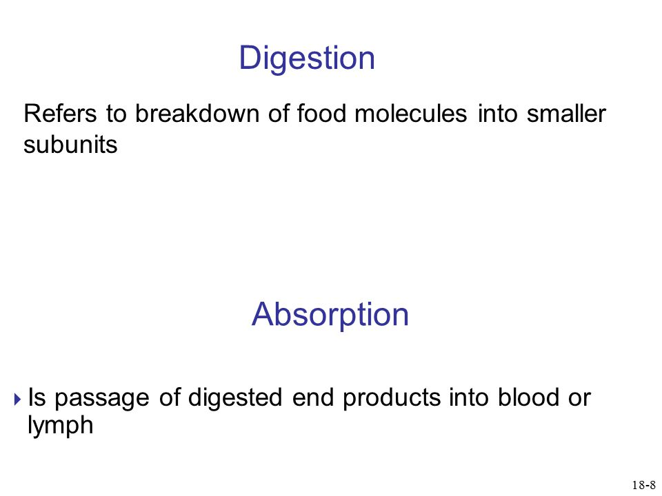 Digestion Refers to breakdown of food molecules into smaller subunits. Absorption. Is passage of digested end products into blood or lymph.