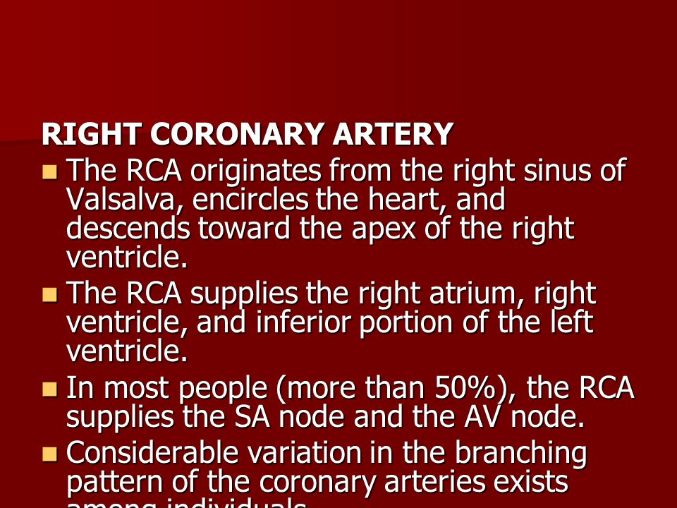 RIGHT CORONARY ARTERY The RCA originates from the right sinus of Valsalva, encircles the heart, and descends toward the apex of the right ventricle.