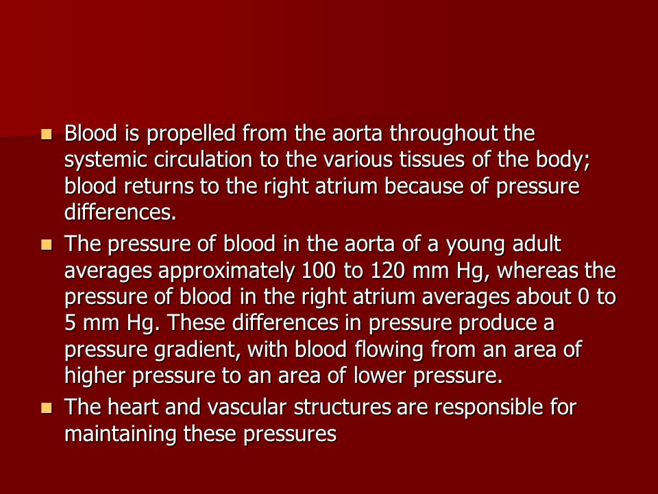 Blood is propelled from the aorta throughout the systemic circulation to the various tissues of the body; blood returns to the right atrium because of pressure differences.