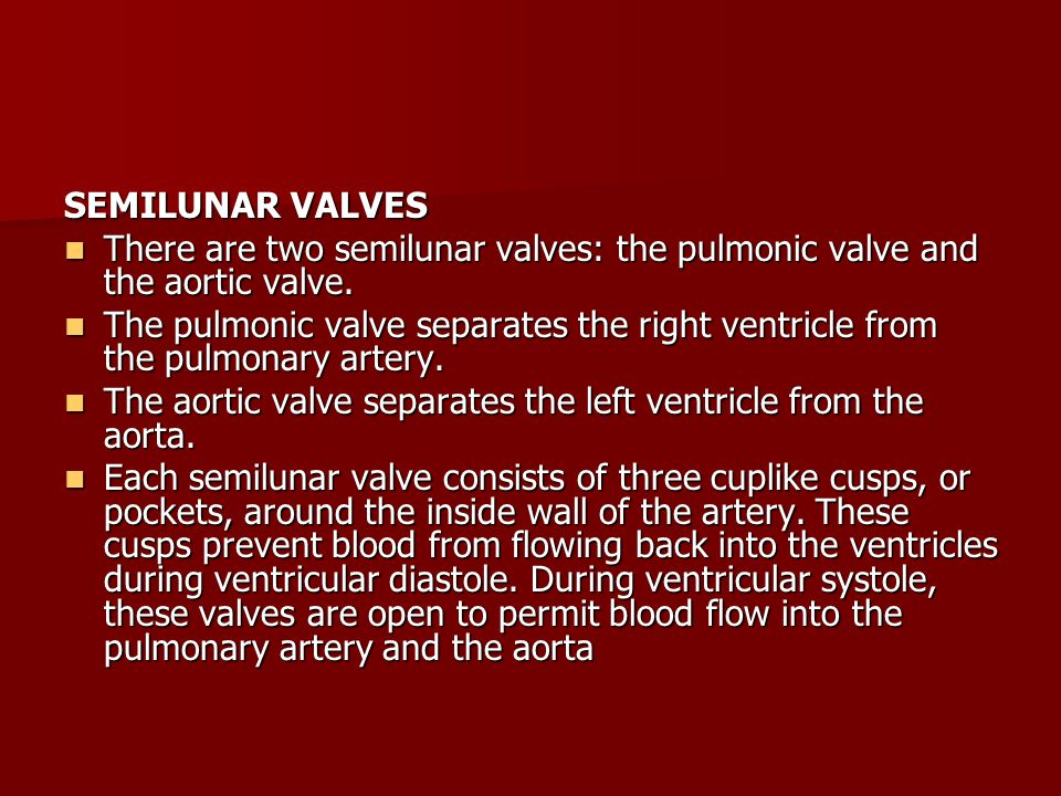 SEMILUNAR VALVES There are two semilunar valves: the pulmonic valve and the aortic valve.