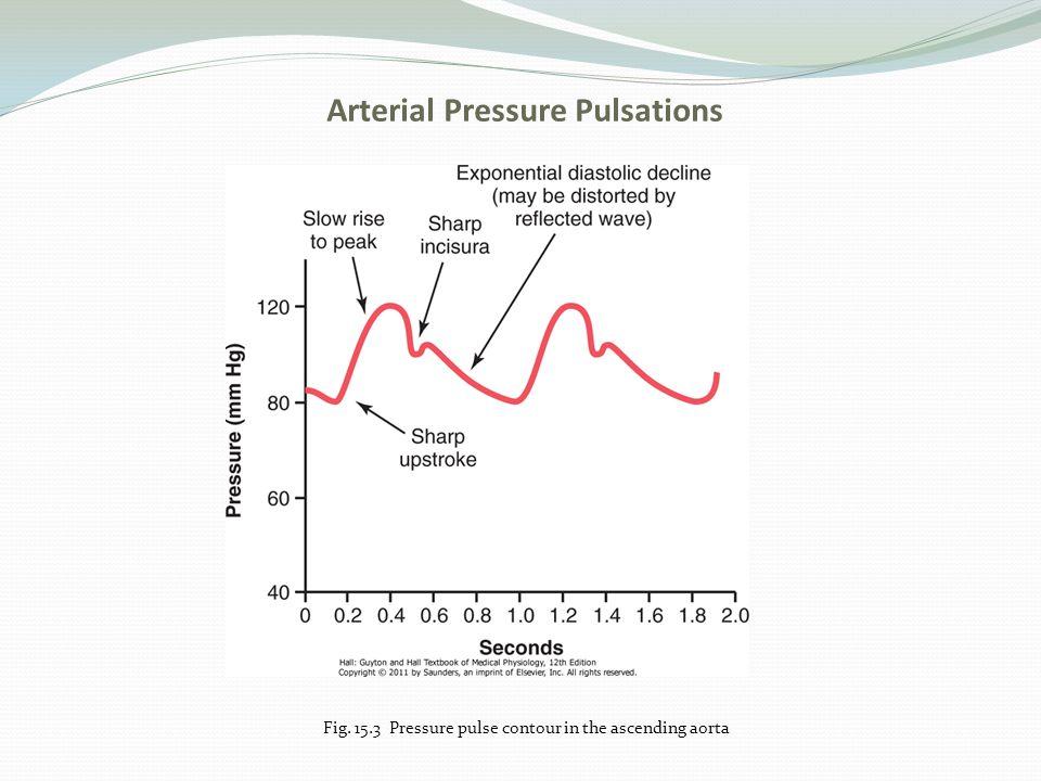 Arterial Pressure Pulsations